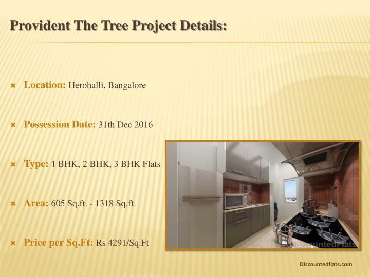 Provident the tree project details
