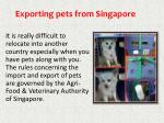 exporting pets from singapore