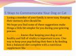 5 ways to commemorate your dog or cat6