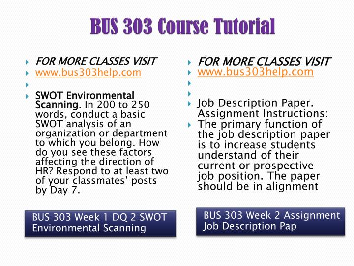 bus 303 job description paper