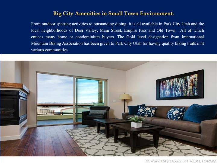 Big City Amenities in Small Town Environment: