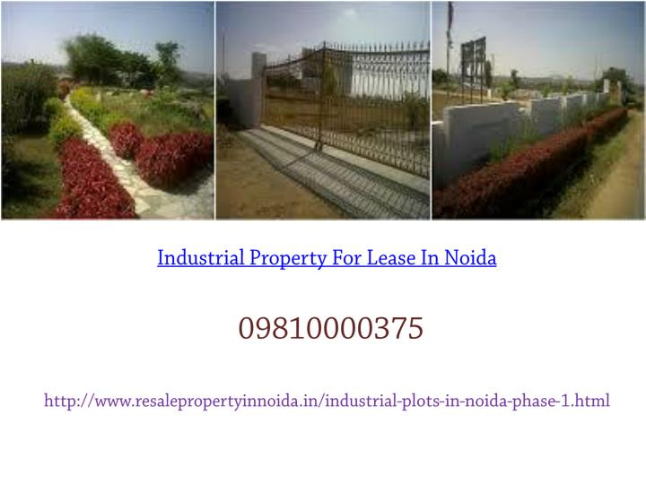 Industrial Property For Lease In Noida