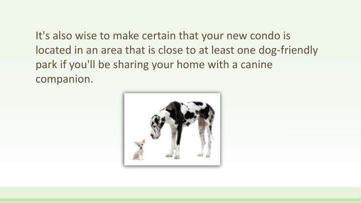It's also wise to make certain that your new condo is located in an area that is close to at least one dog-friendly park if you'll be sharing your home with a canine companion.