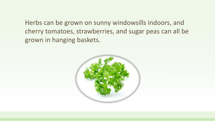 Herbs can be grown on sunny windowsills indoors, and cherry tomatoes, strawberries, and sugar peas can all be grown in hanging baskets.