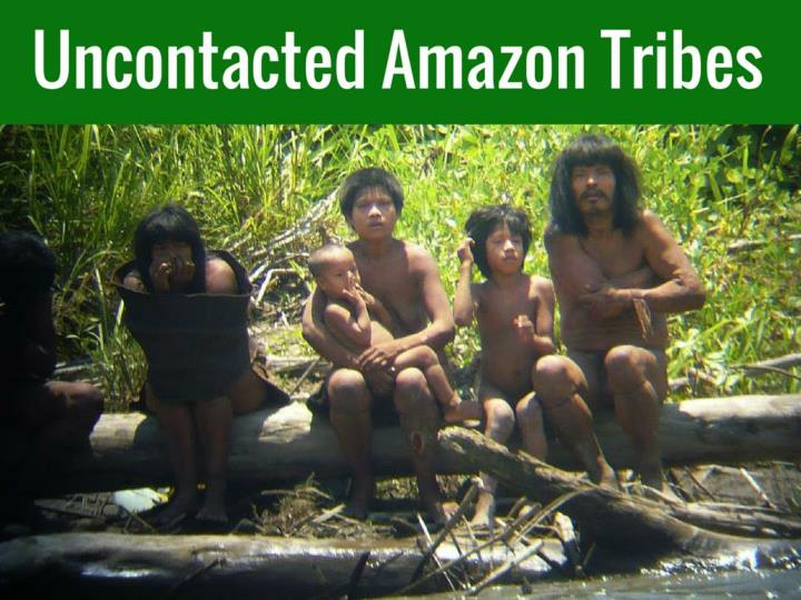 uncontacted amazon tribes n.