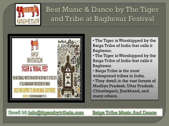 best music dance by the tiger and tribe at baghesur festival n.