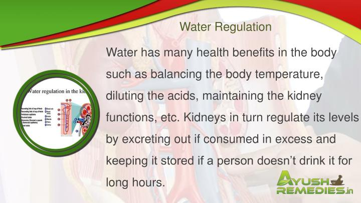 Water Regulation