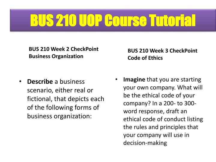 bus 210 week 3 check point code of ethics