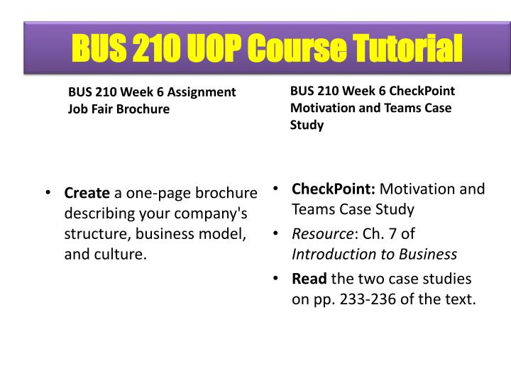 bus 210 job fair brochure essay example