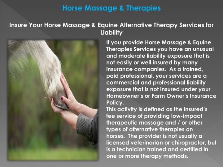 Horse Massage & Therapies