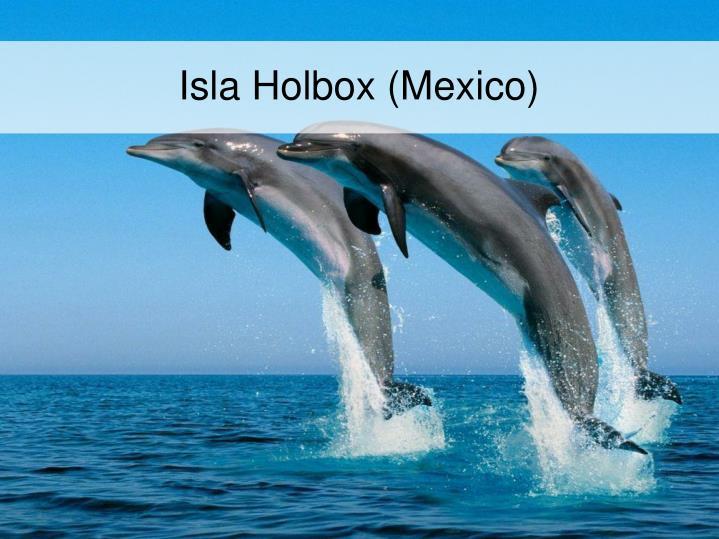 Isla Holbox (Mexico)