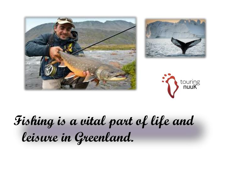 Fishing is a vital part of life and leisure in Greenland.