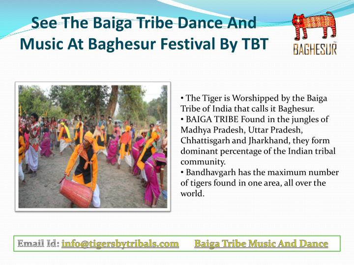 see the baiga tribe dance and music at baghesur festival by tbt n.
