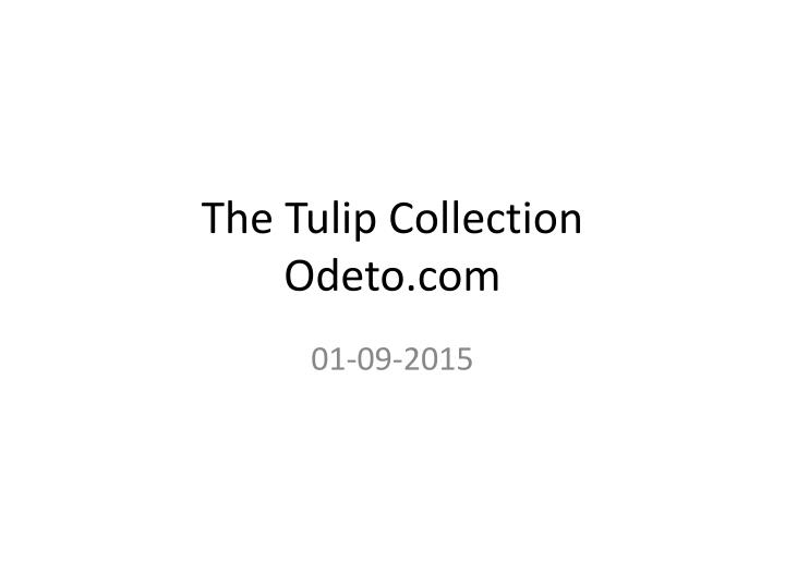 the tulip collection odeto com