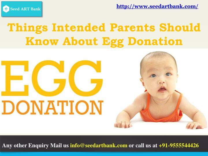 things intended parents should know about egg donation n.