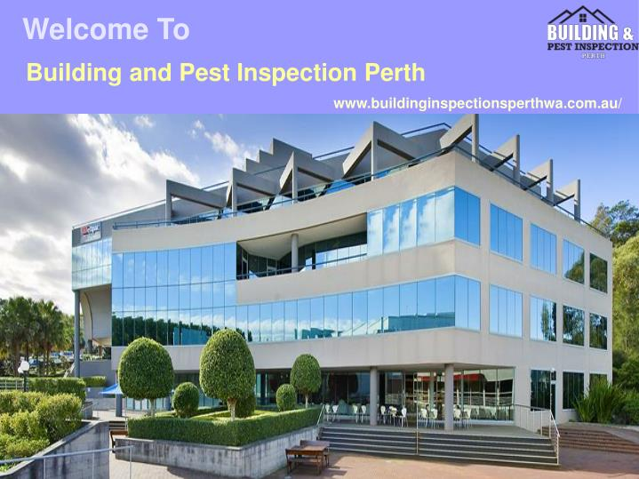 building and pest inspection perth n.