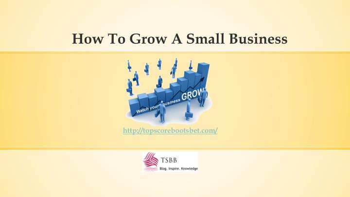 how to grow a small business n.