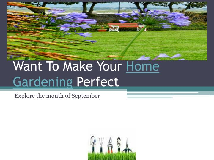 Want to make your home gardening perfect