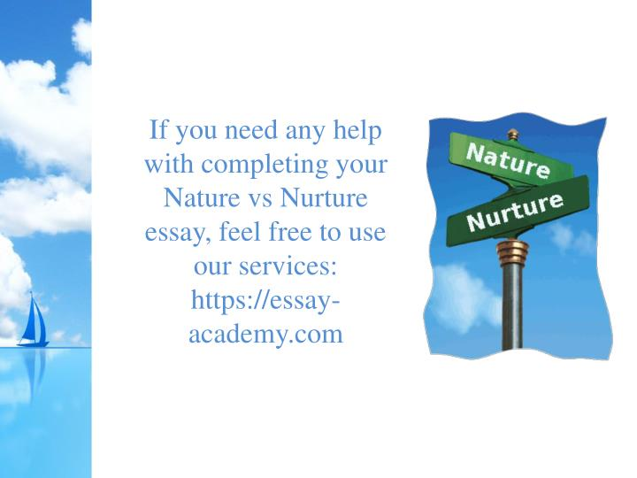 essay about the nature