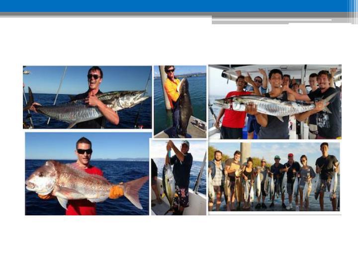 Gold coast fishing charters reviews www smarterfishingcharters com au