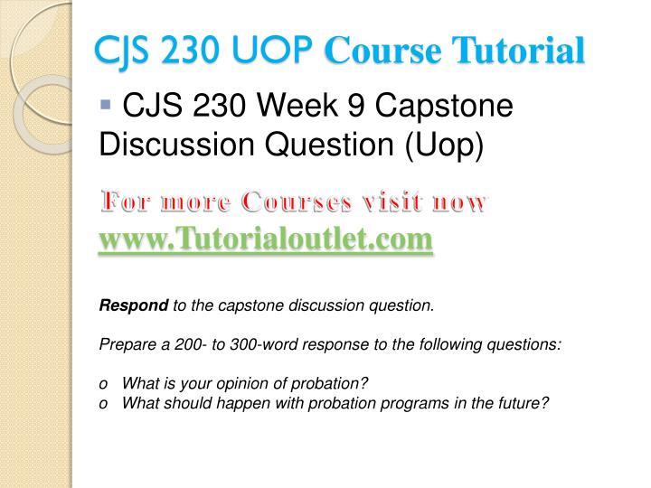 cjs 230 week 9 capstone dq Week 9 capstone dq appendix c answers  cjs 200 cjs 210 cjs 220 cjs 240 cmgt 410 com 130  mat 116 mat 116 final exam answers mat 117.