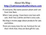 about my blog http cattreesandcatfurniture com
