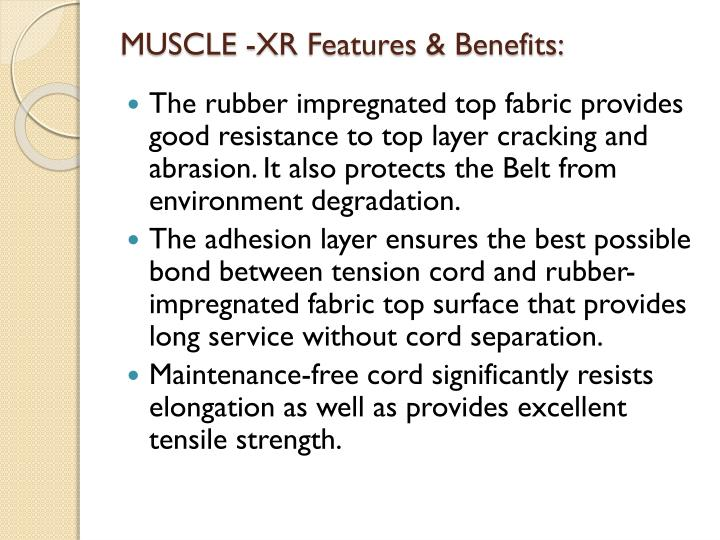 MUSCLE -XR Features & Benefits: