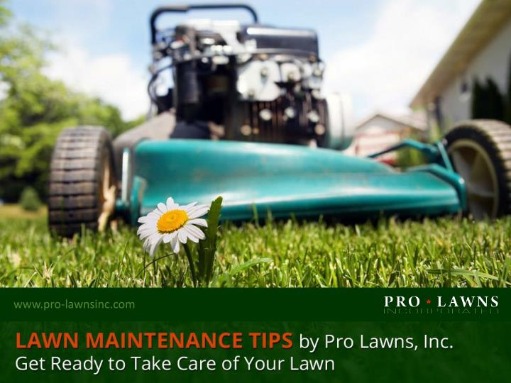 lawn maintenance tips by pro lawns inc get ready to take care of your lawn n.