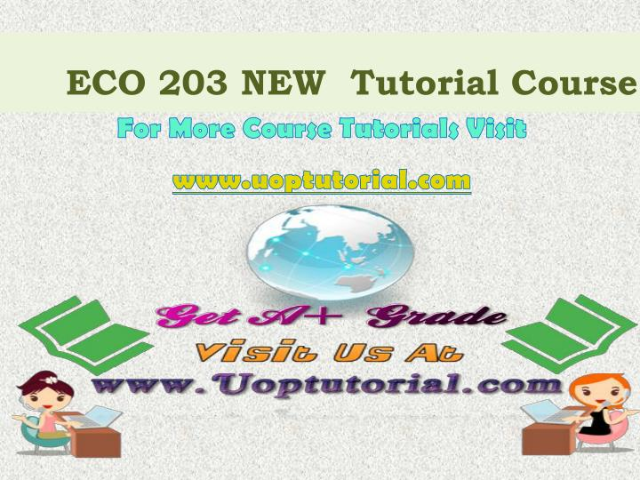 eco 203 new tutorial course n.