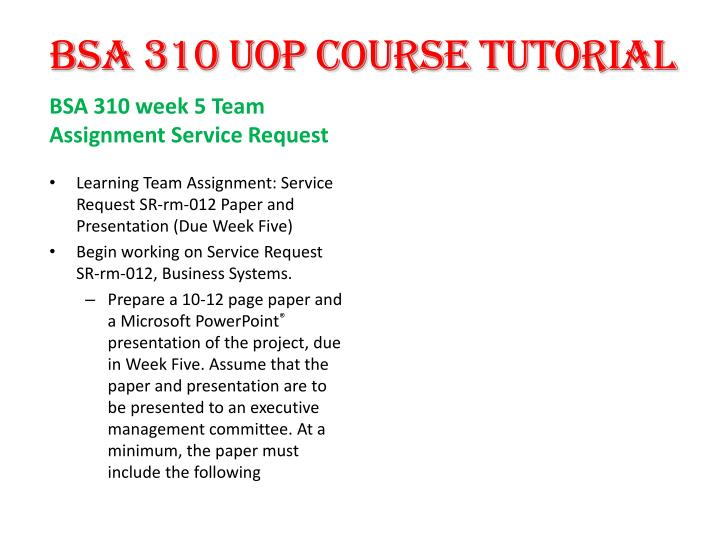 bsa 310 week 2 service request