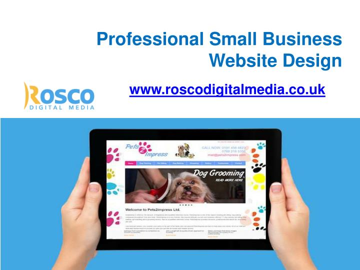 professional small business website design n.