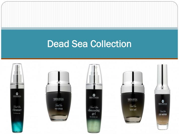 dead sea collection n.