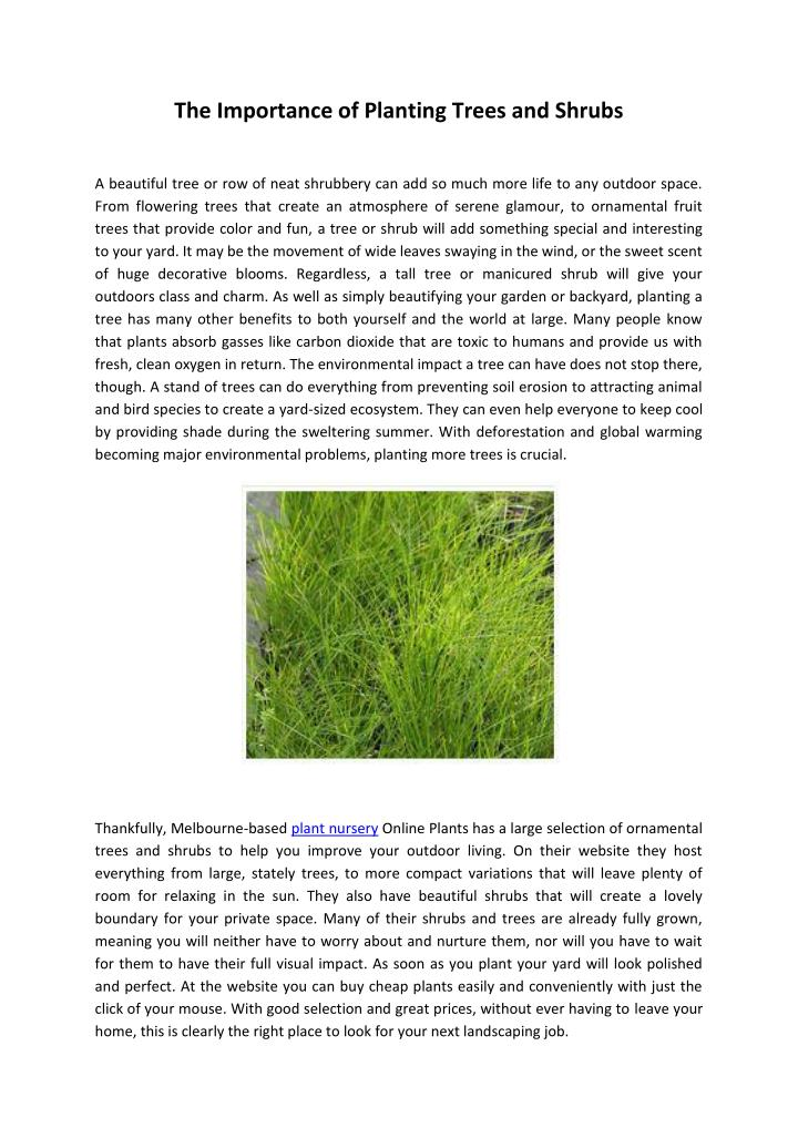 PPT - importance of planting trees and shrubs PowerPoint