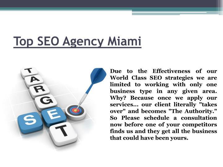 Top SEO Agency Miami