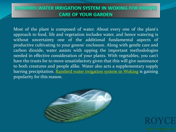 rainbird water irrigation system in woking for proper care of your garden n.
