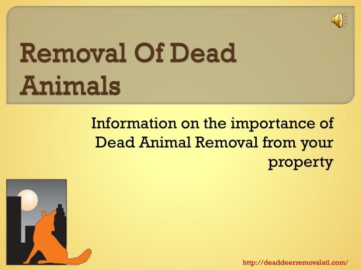 removal of dead animals n.