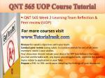 qnt 565 uop course tutorial8