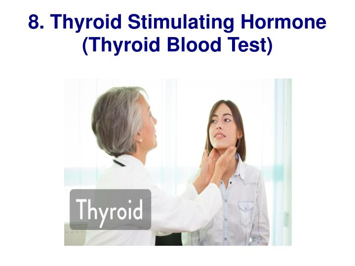 8. Thyroid Stimulating Hormone (Thyroid Blood Test)