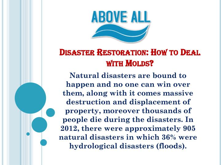 disaster restoration how to deal with molds n.