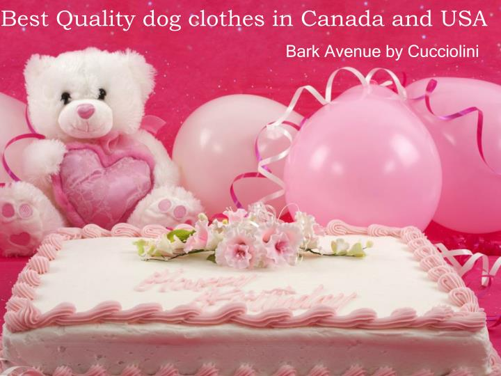 best quality dog clothes in canada and usa n.