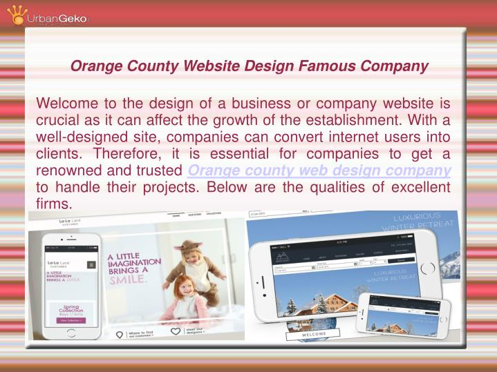 orange county website design famous company n.