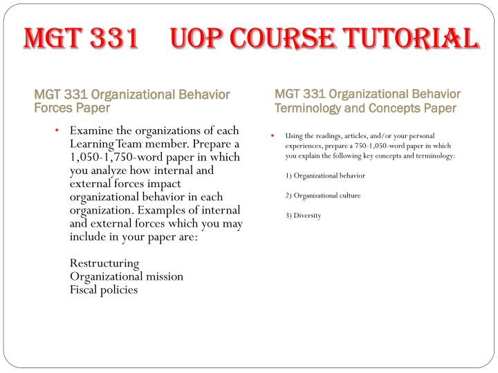 organizational behavior mgt331 essay