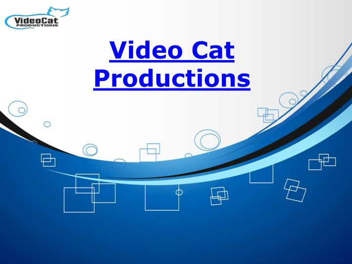video cat productions n.