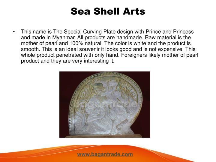 Sea Shell Arts