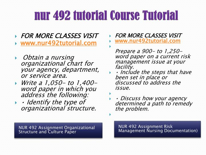 nur 492 nursing leadership interview paper