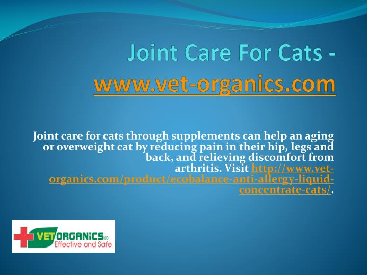 joint care for cats www vet organics com n.