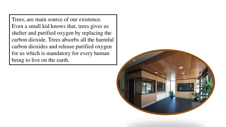 Trees, are main source of our existence. Even a small kid knows that, trees gives us shelter and pur...