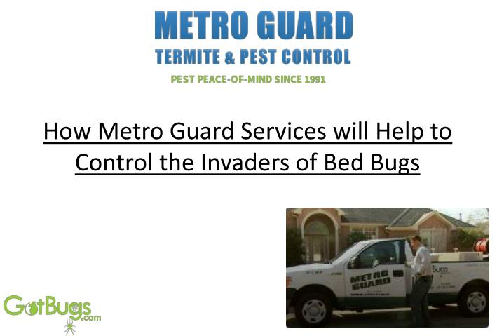 How metro guard services will help to control the invaders of bed bugs