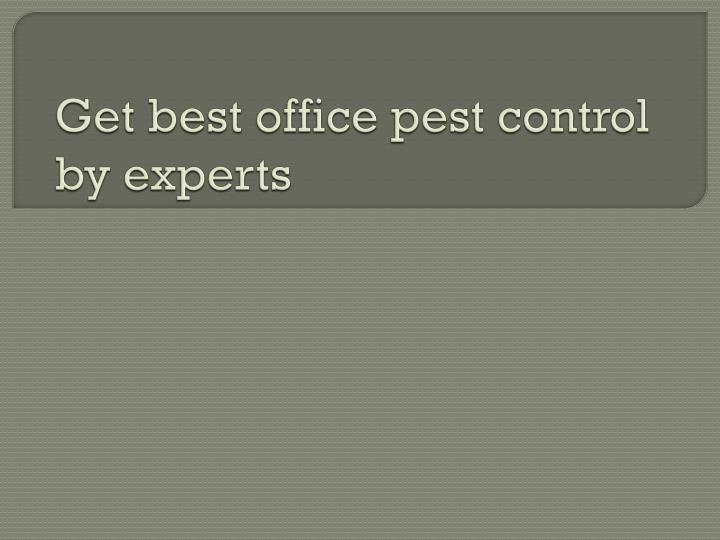 get best office pest control by experts n.