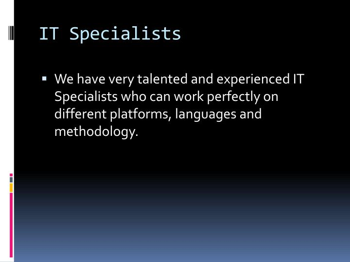 IT Specialists